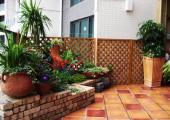 庭院养花与设计