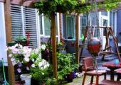 家庭室内养殖花卉注意事项