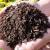如何在家自制花卉土壤