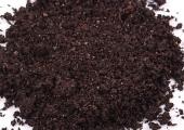 盆栽桂花树施肥